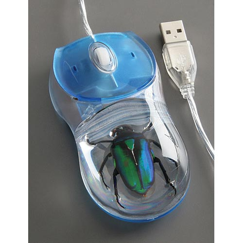 beetle-mouse