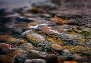 Startup descobre como usar bactérias para despoluir as águas dos rios