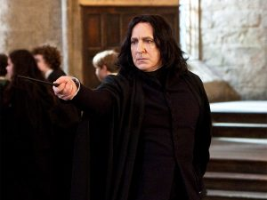 Harry Potter Sonserina